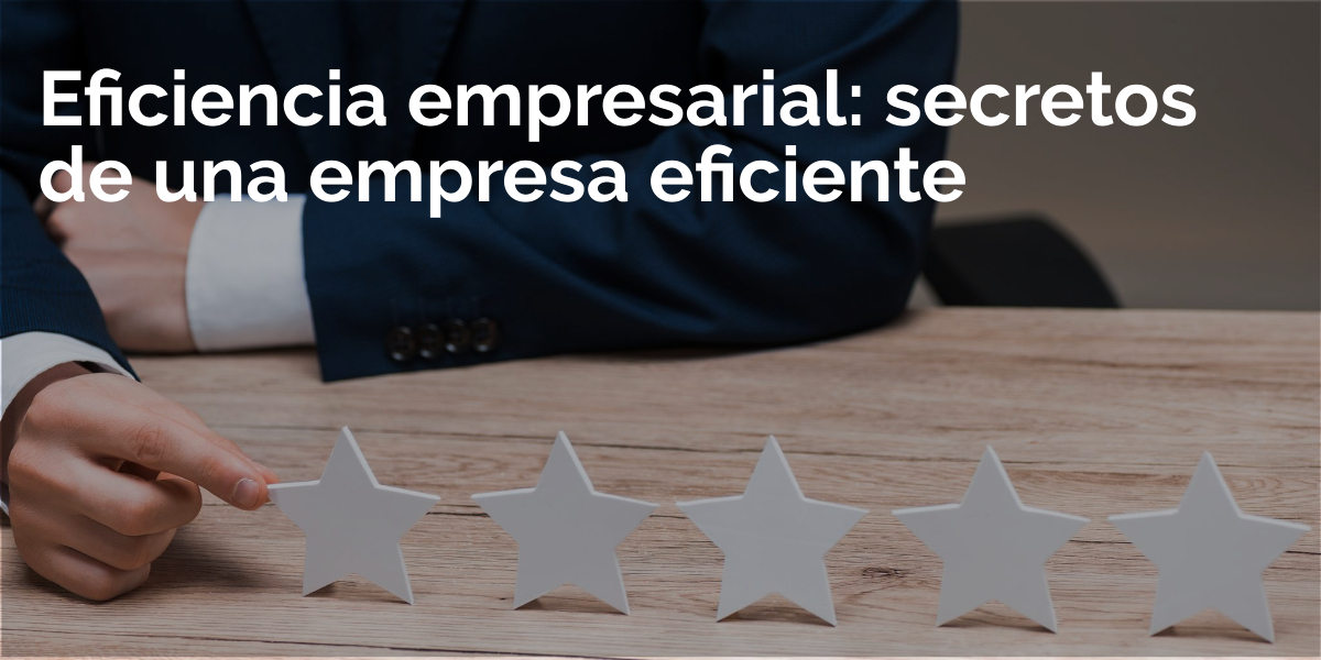 eficiencia empresarial