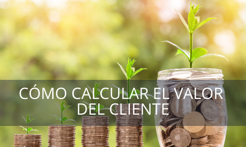 Valor del cliente-Life time value