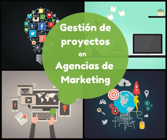 gestión de proyectos agencia marketing consultoría