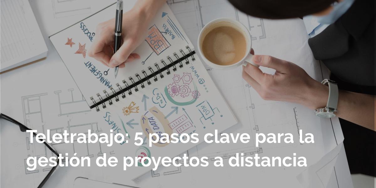 gestion de proyectos a distancia