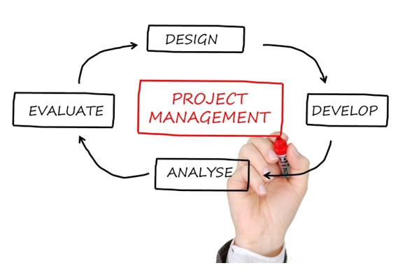 el director de proyectos