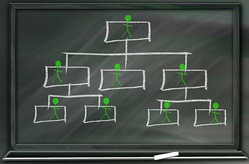 Liderazgo en la gestión de proyectos: roles y equipo de trabajo